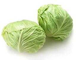 长沙蔬菜亚博体育app苹果下载地址之包菜