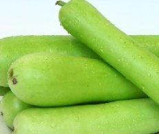 长沙蔬菜亚博体育app苹果下载地址之蒲瓜