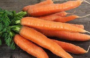 万博bet蔬菜万博manbetx官网手机登录之胡萝卜