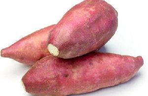万博bet蔬菜万博manbetx官网手机登录之番薯